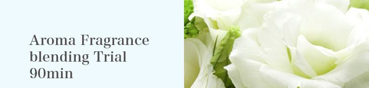Aroma Fragrance blending Trial 90minn